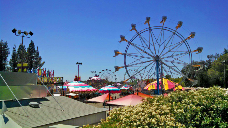 End of Summer Fairs: Not Just for Farming